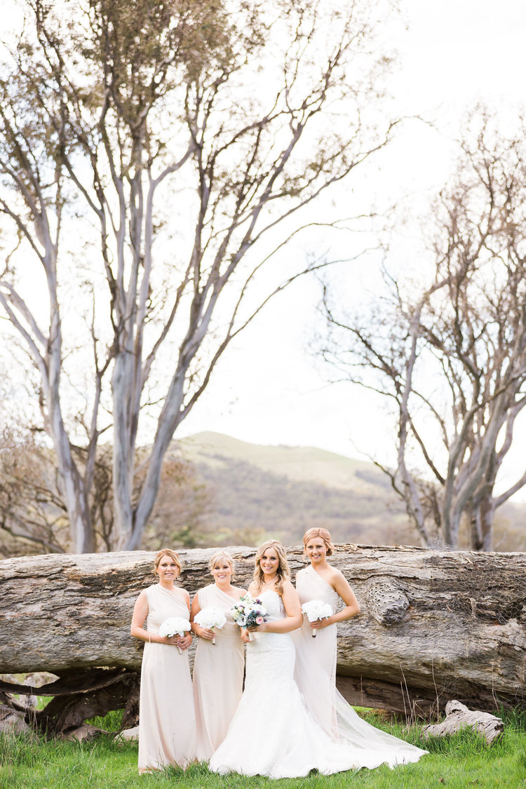 Bride+and+Bridesmaids+-+Gold+Creek+Station+Wedding.jpeg