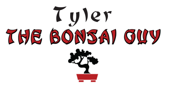 Tyler The Bonsai Guy