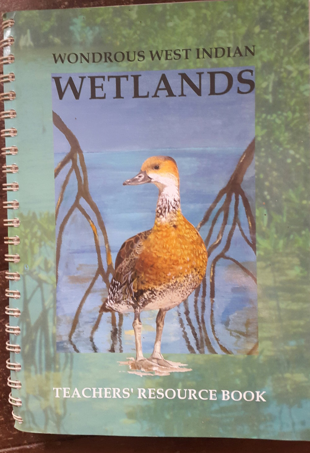 a comprehensive guide to teaching about caribbean wetlands