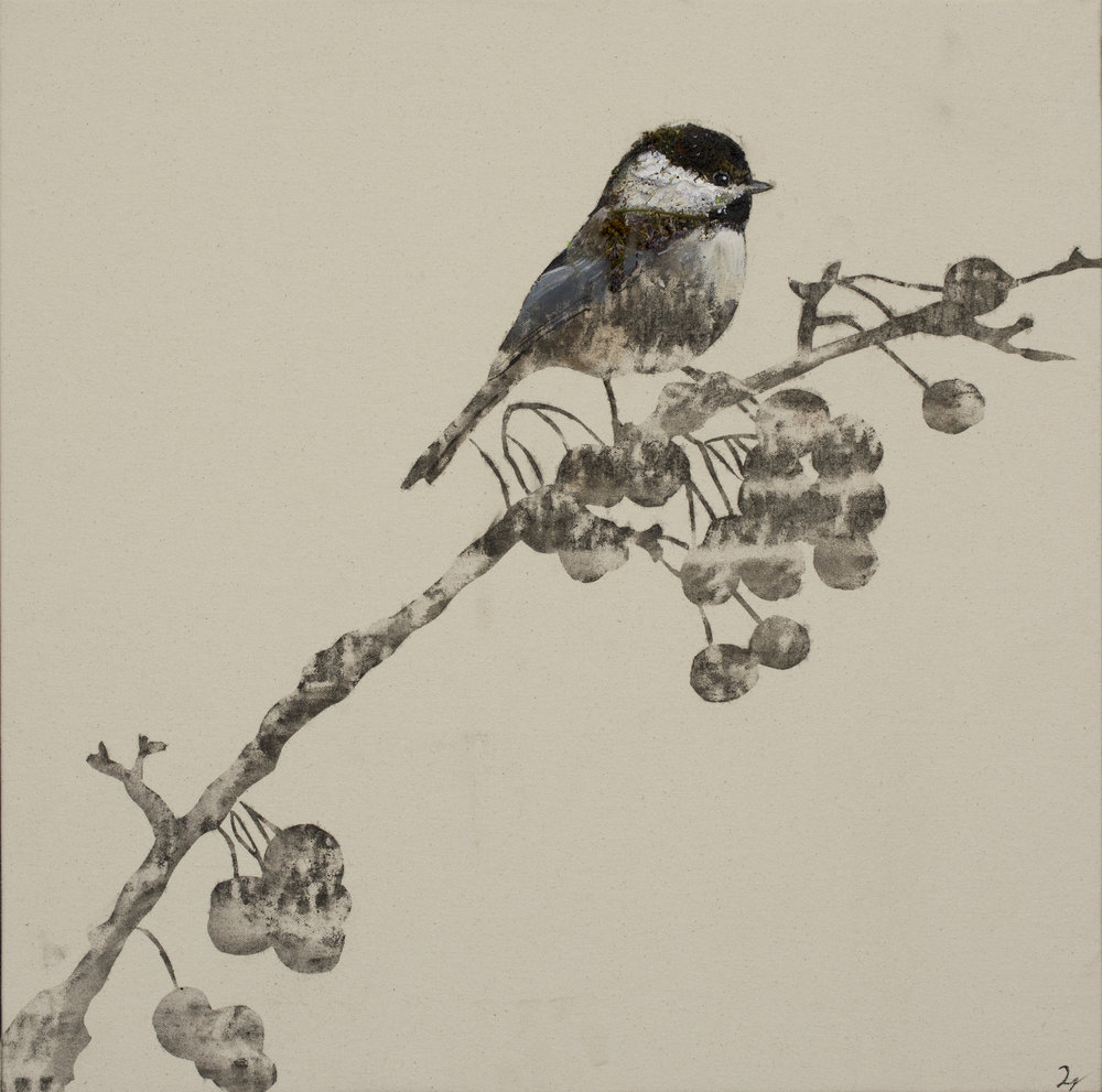 Earth Bird, Boreal Chickadee