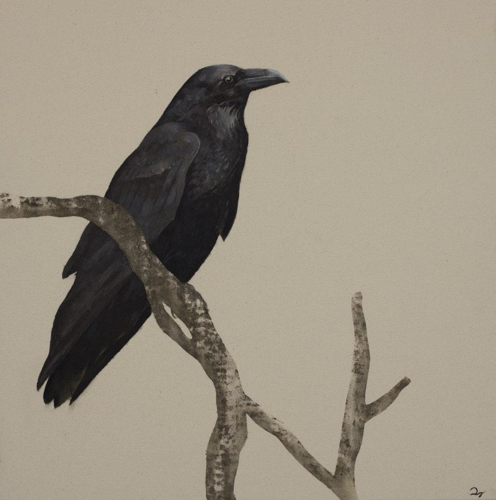 Beryl's Raven