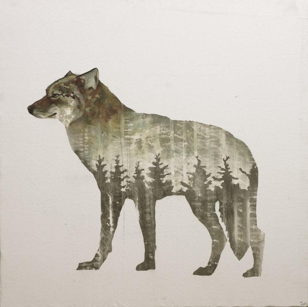"""Honiakaka, Cheyenne """"little wolf"""""""