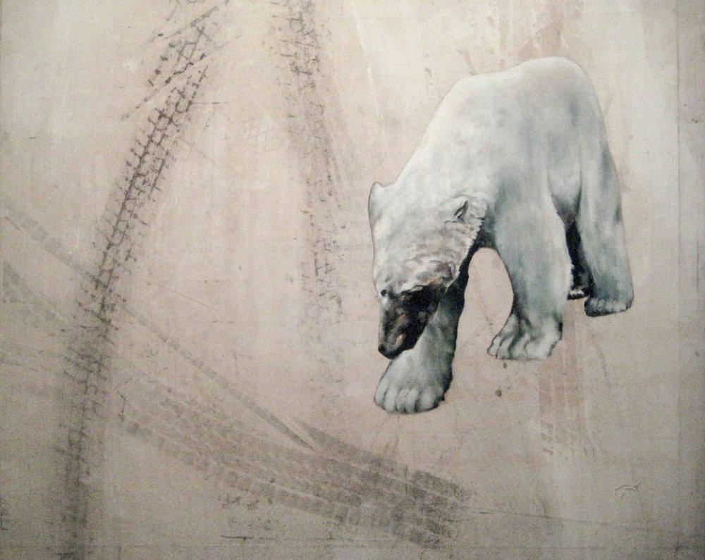 Roaming Bear