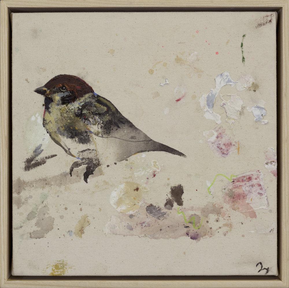Drop Cloth Bird 1