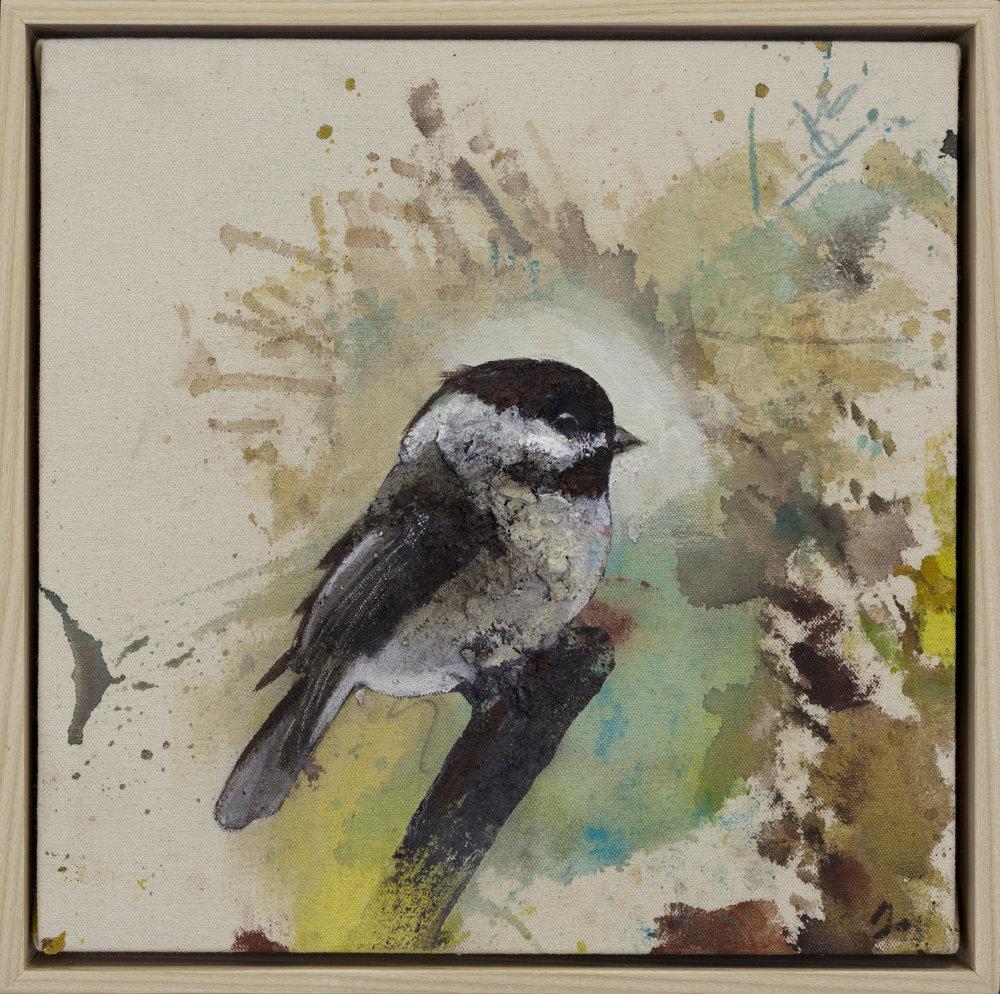 Drop Cloth Bird 3