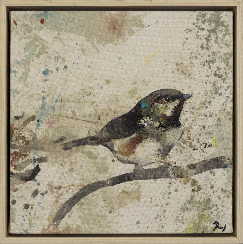 Drop Cloth Bird 5