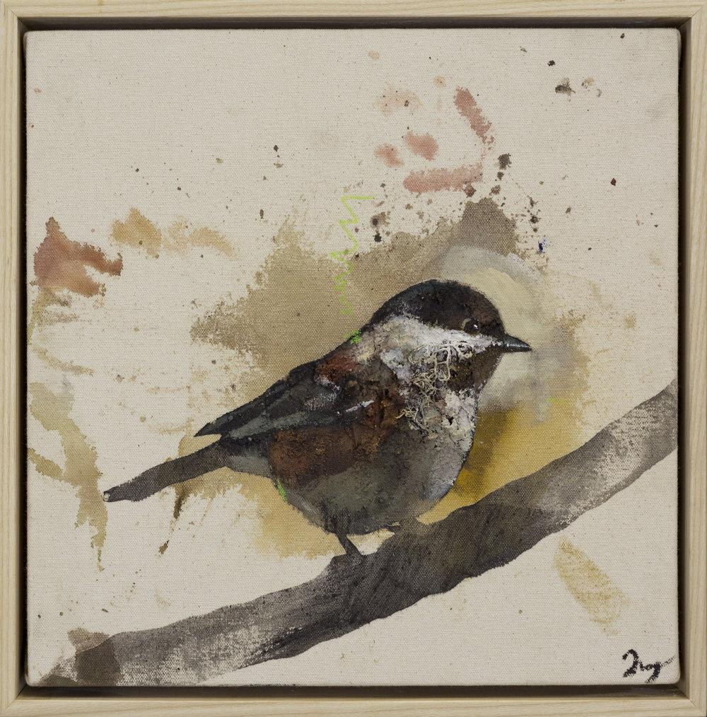 Drop Cloth Bird 6
