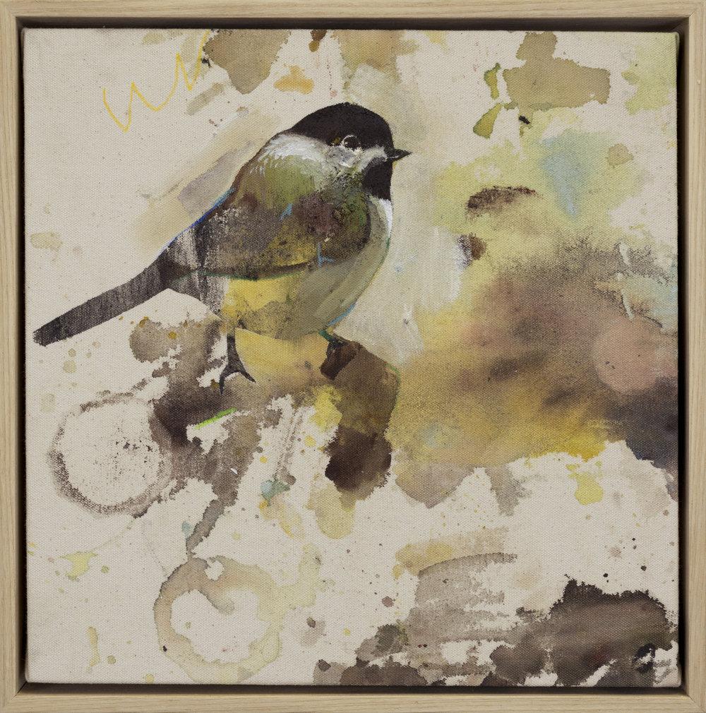 Drop Cloth Bird 10