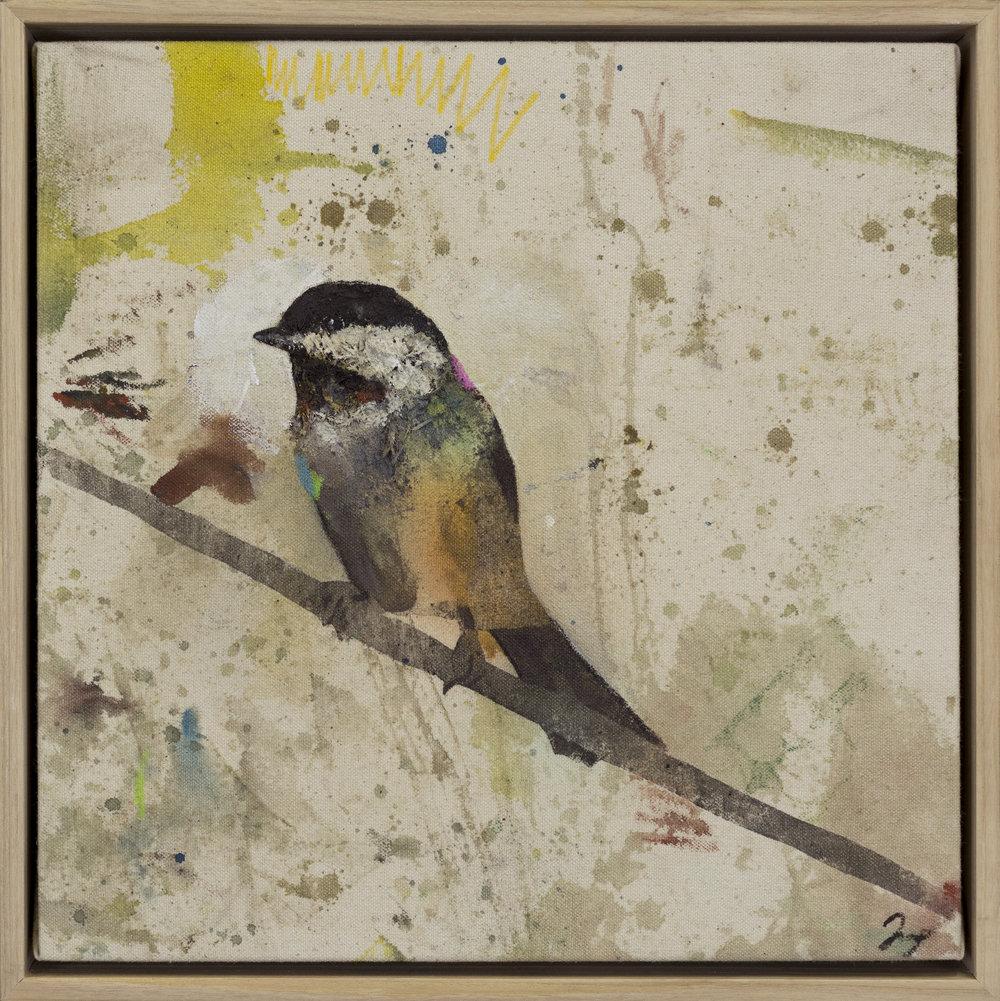 Drop Cloth Bird 11