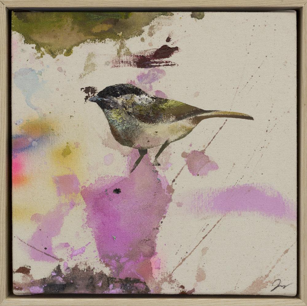 Drop cloth bird # 16