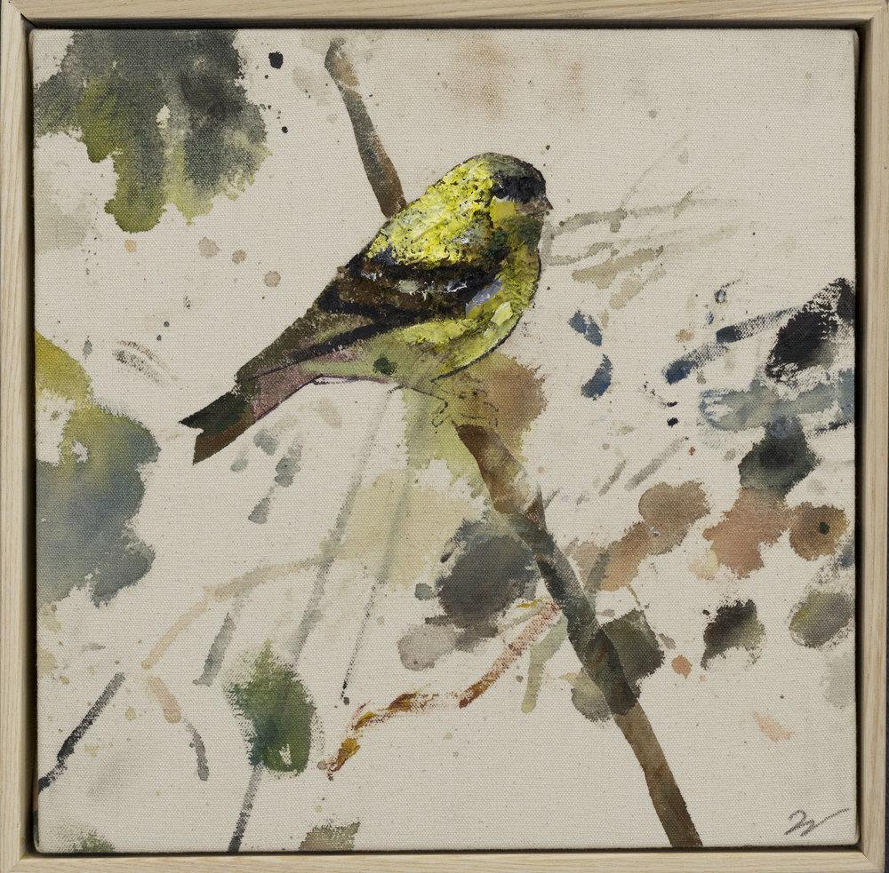 Drop cloth bird # 31