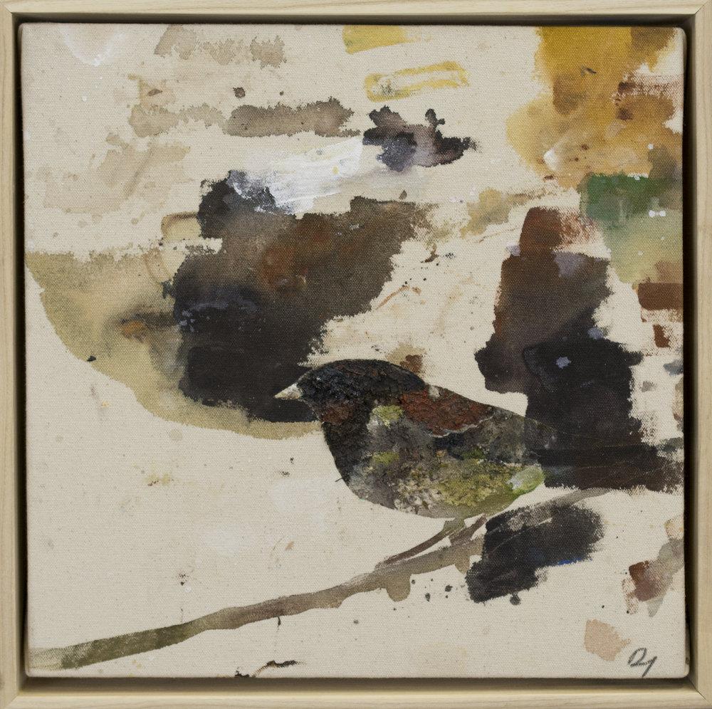 Drop cloth bird # 34