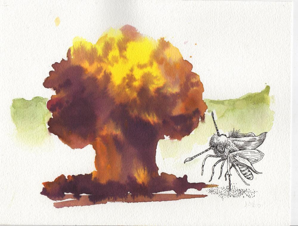 Explosions 2.jpg