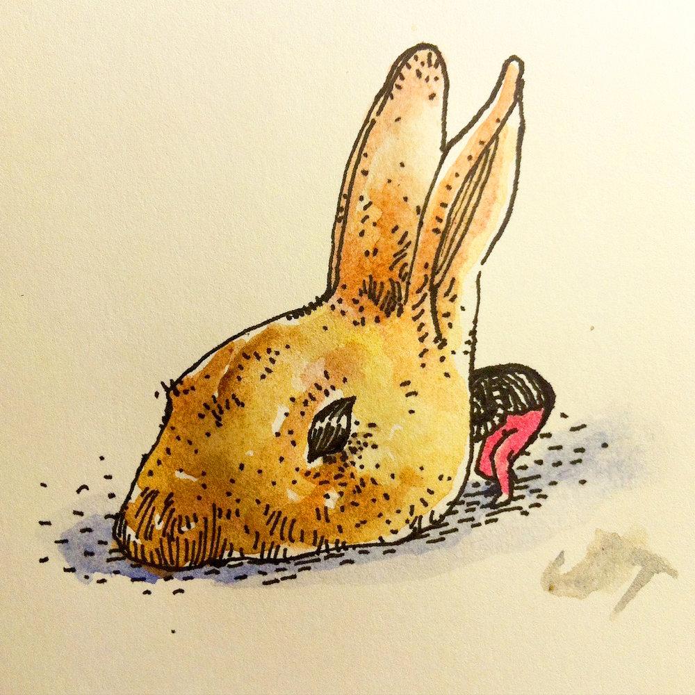 bunny head.jpg