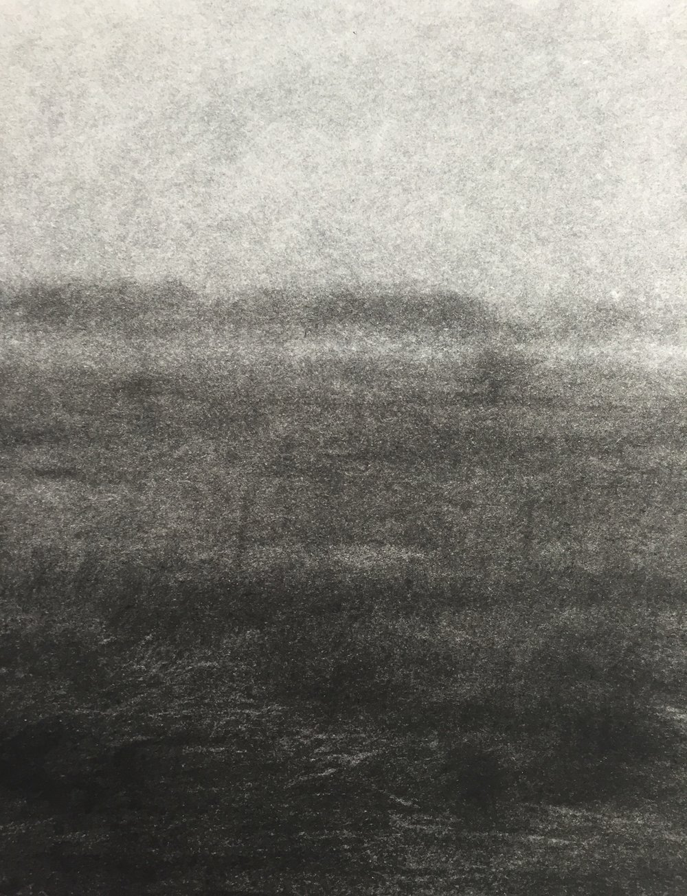 Amelia Carroll Artist Charcoal Drawing 2.JPG