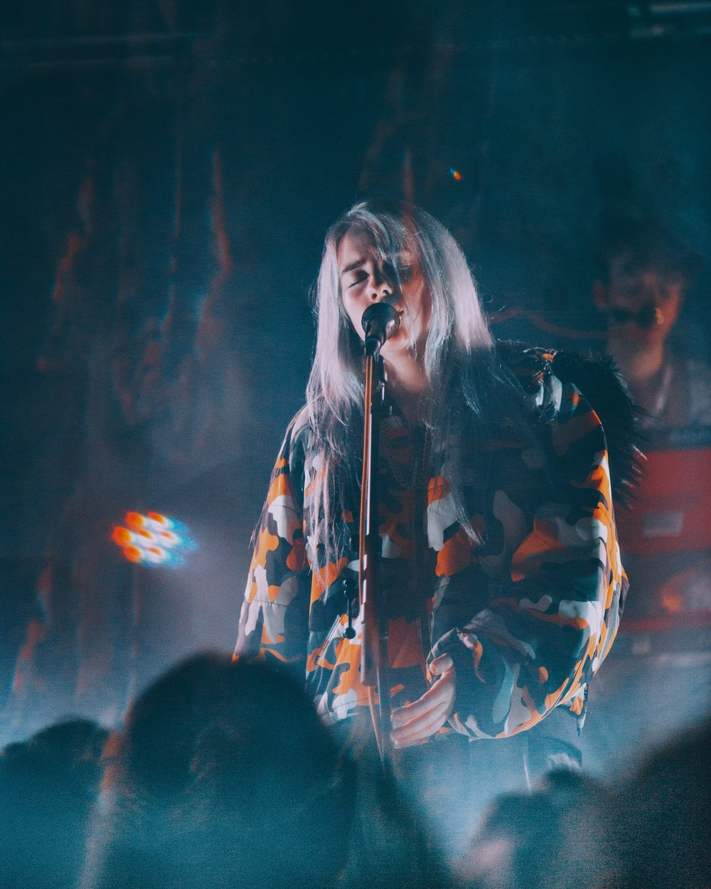 Billie Eilish  (Brooklyn, NY)