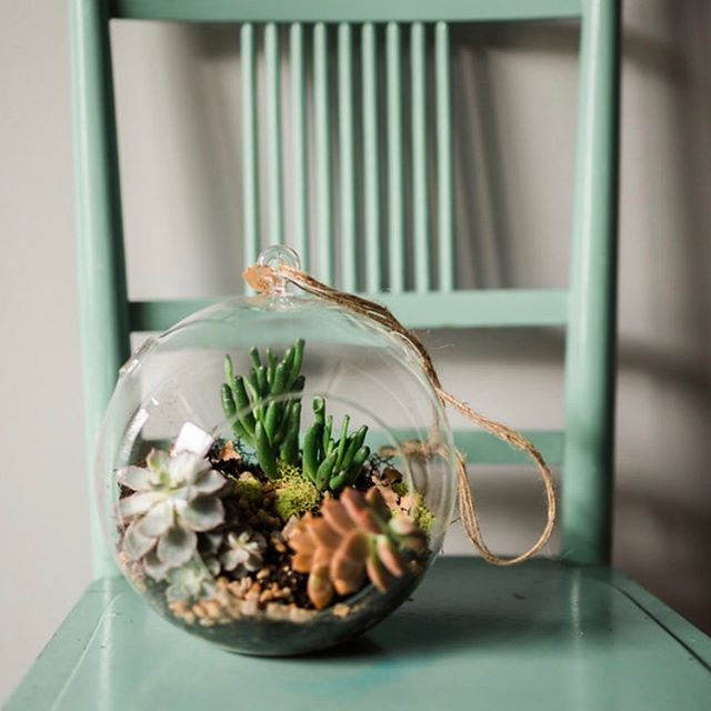 Mark your calendars. We're popping up at @shopmakeandmatter on Saturday April 26 and offering a terrarium workshop there at 2pm. Sign up quick! 🌿🌿 Link in bio.  pc: @tarabennett13