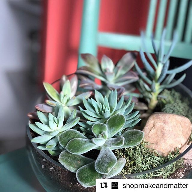 #Repost @shopmakeandmatter with @get_repost PC: @tarabennett13 ・・・ We have a plant pop-up & terrarium workshop coming up with @pghfarmandforest in April. Follow the linktree in our bio to learn more and secure your spot!