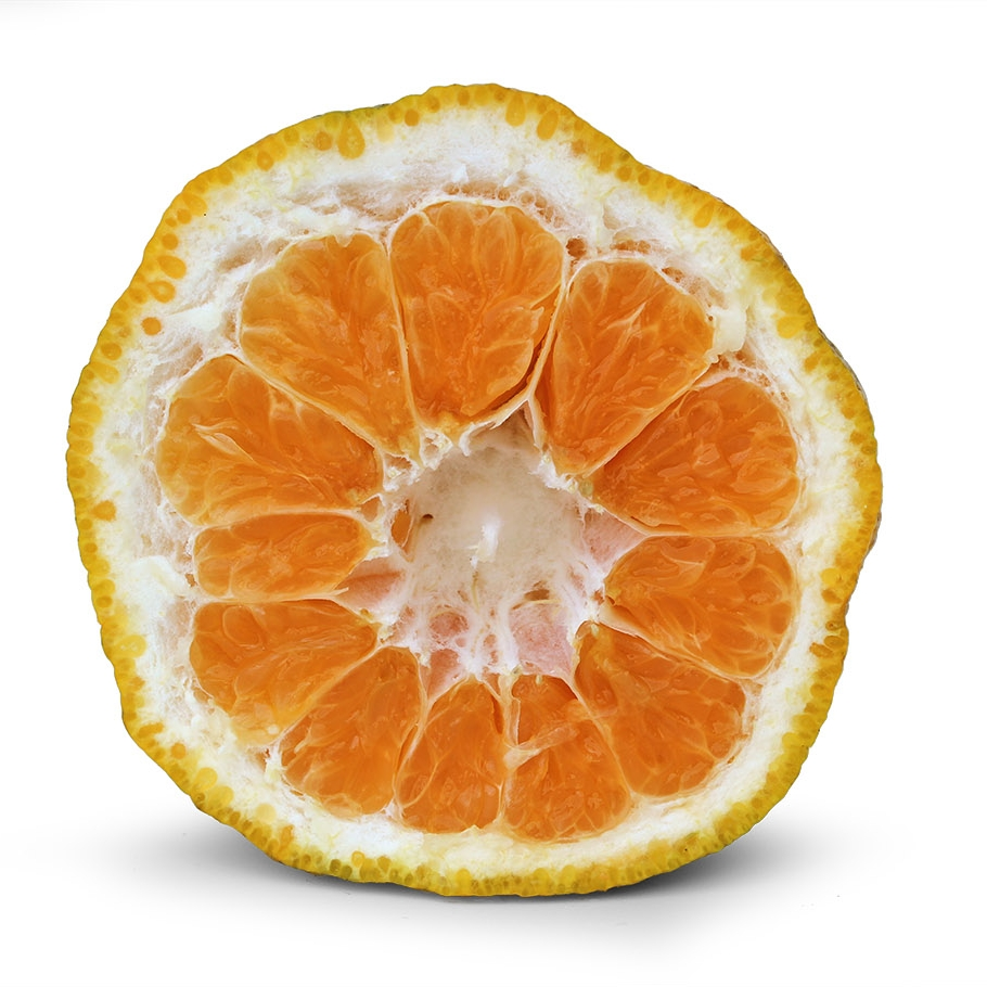 Ugli Fruit Interior.jpg