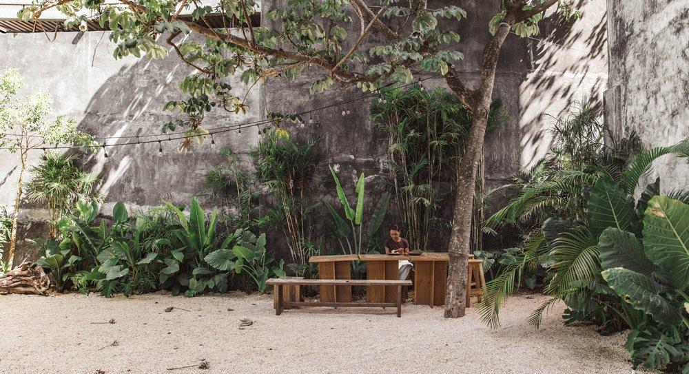 Garden area at Casa Pueblo