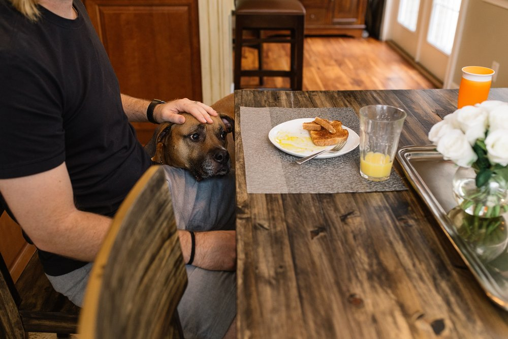 Dog at Breakfast Table Orlando Documentary Photographer.jpg