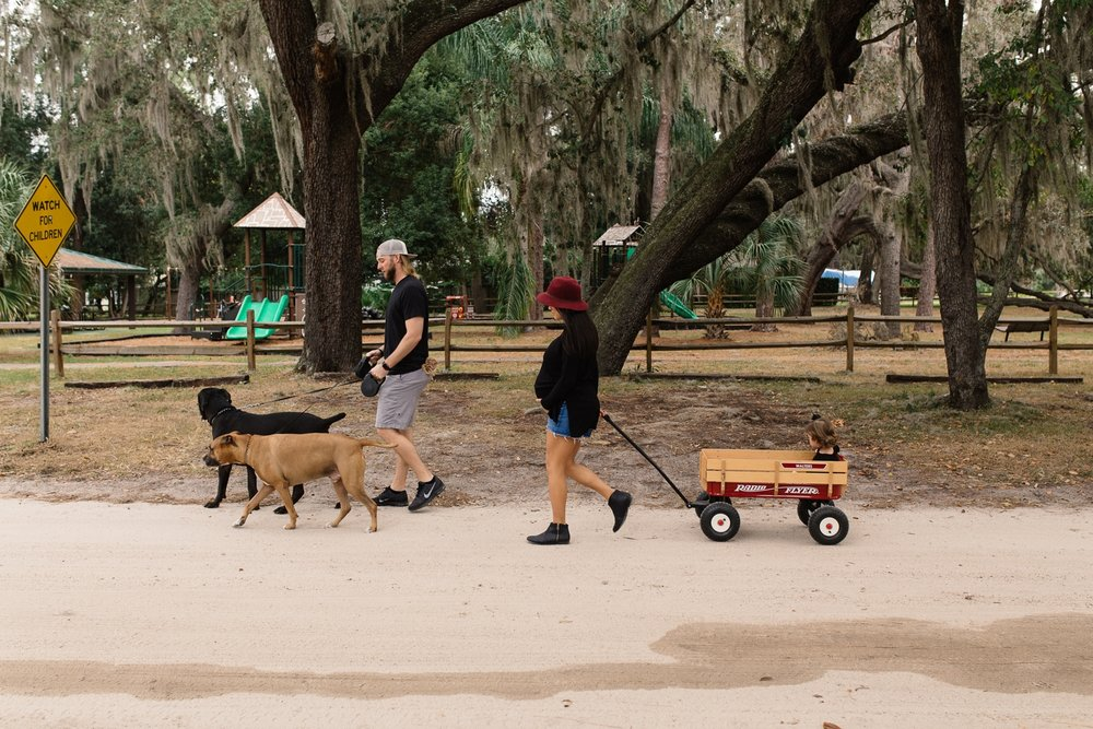 Family Walks Dogs in Central Florida Documentary Photographer.jpg