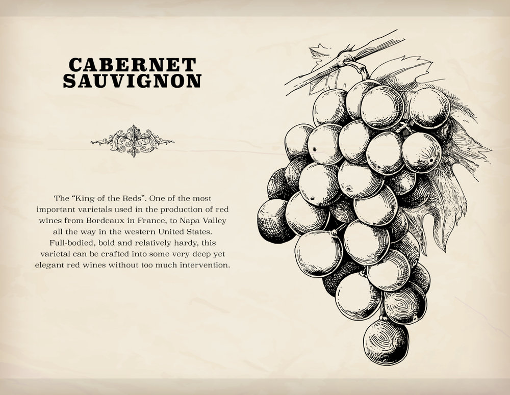 Cabernet is one of two varietals that are available at the beginning of a new game.