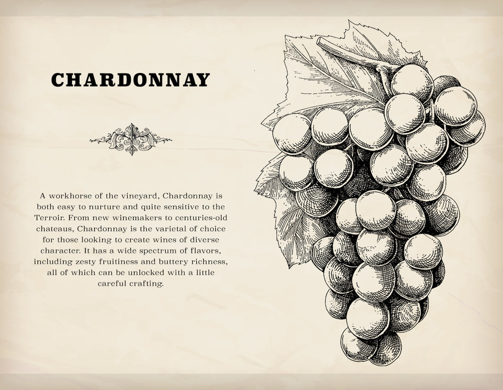 Chardonnay is the other varietal available to the player when starting out in a new game.