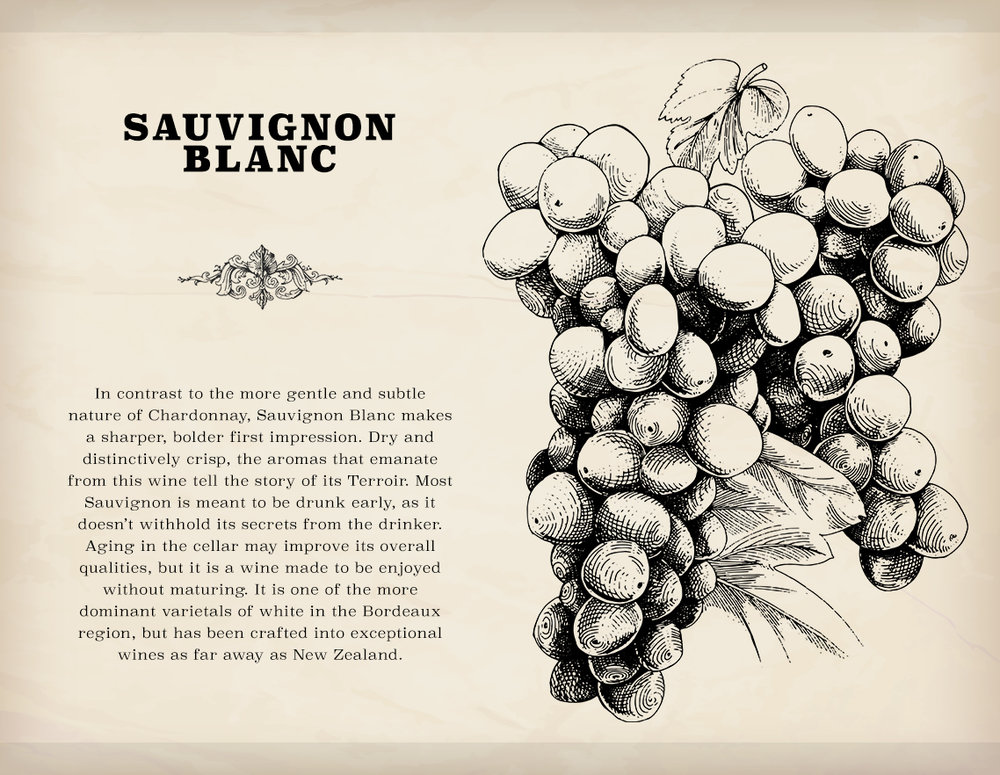 The second white grape variety available in Terroir, which can be unlocked by the player after a certain point in the game, and for a price.