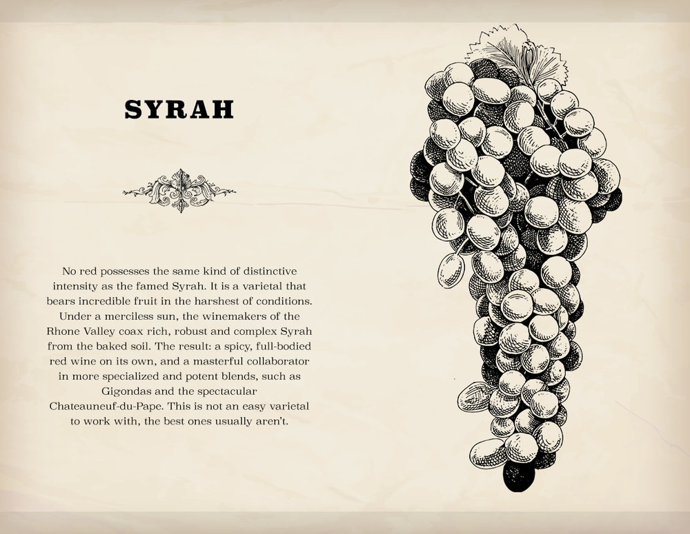 Syrah is the last unlockable varietal and probably the most challenging to cultivate and craft. But if a player does manage to do so successfully, the rewards are well worth it.