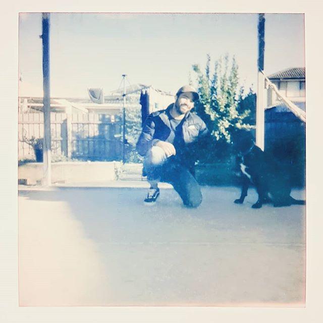 Billie Jean is most likely my lover 🐶 . . . . . #penson #melbourne #polaroid #dog #billiejean