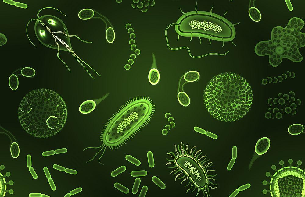 Microbiome-1000w.jpg