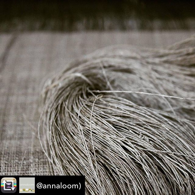 Another fascinating textiles Repost from our South East Asian cirrespondent @annaloom ! - The thread and the woven cloth of the lotus. Plain cloth of lotus fibre is woven in the floating villages of Inle lake and most commonly commissioned by local individuals as an offering for Buddhist monks. The humble looking cloth has a high value, 1m of 70cm wide may cost up to $300.  #lotusfabric #lotusfibre #lotus #unusualfabrics #naturalfibres #sacredthread #inlelake #myanmar