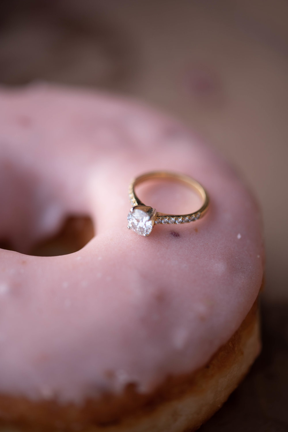 Valens fall Engagement session with soundslikeyellowphotography donut monster
