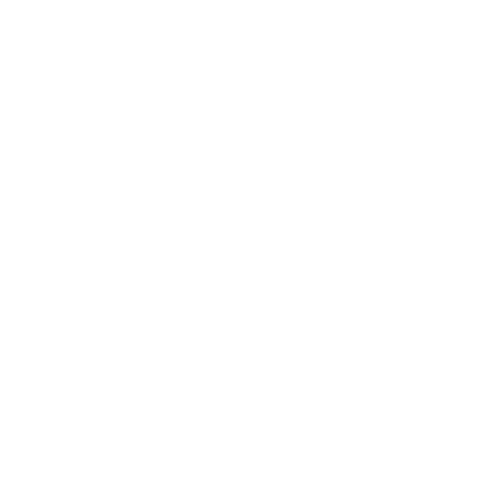 Fortune Logo White.png