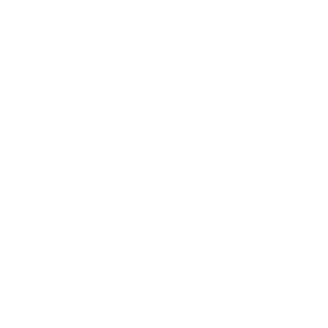 Fortune+Logo+White.png