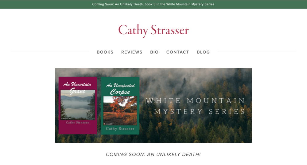 Nutmeg Media_Cathy Strasser Author.png