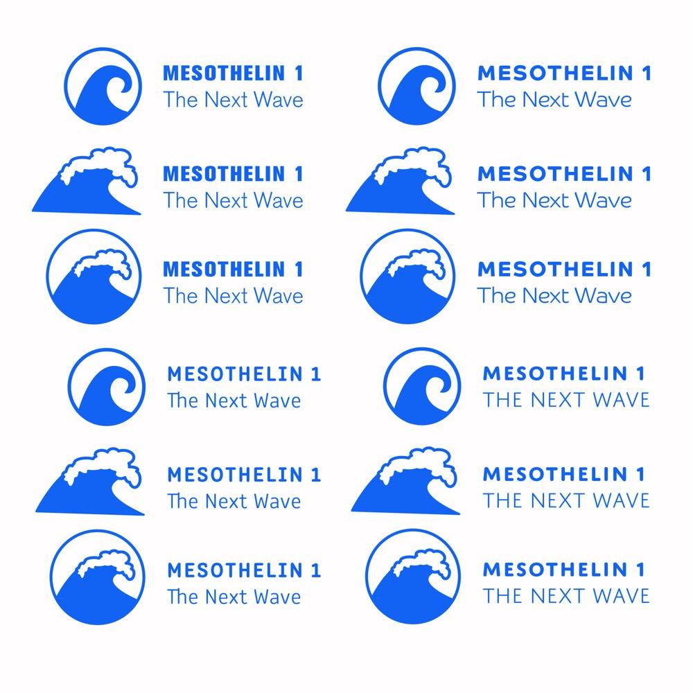 Mesothelin 1 logo-02.jpg