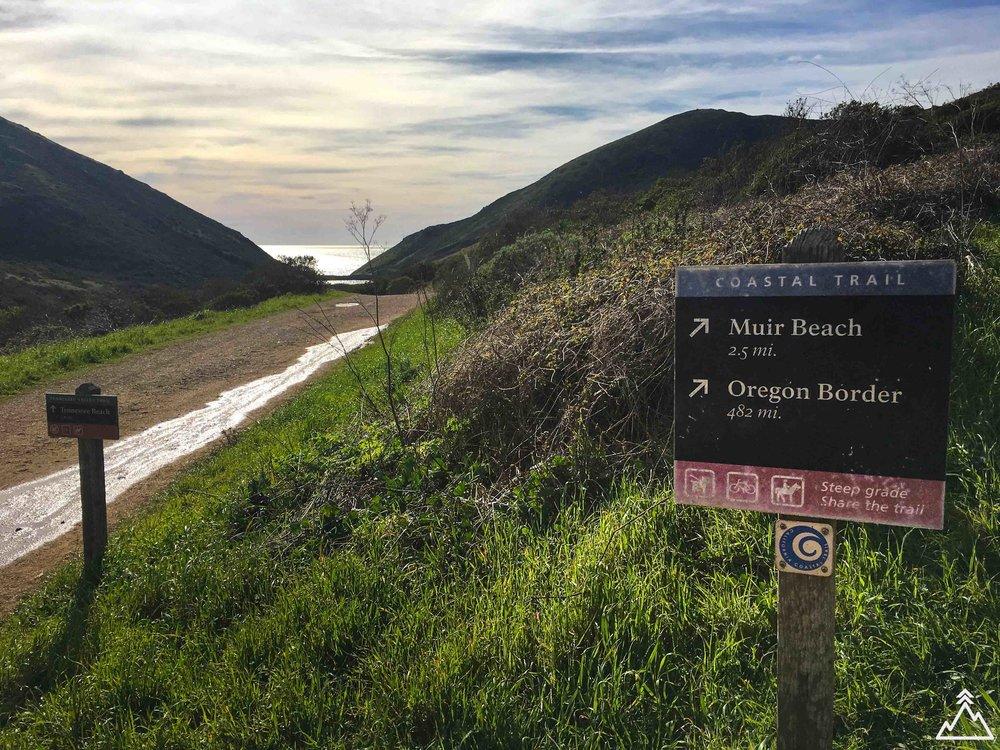 Coast Trail to Muir Beach