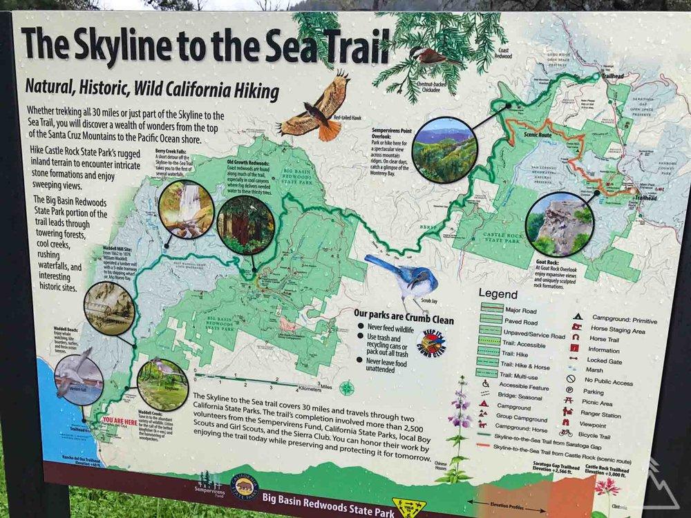 Berry Creek Falls - Big Basin, California — FirTop