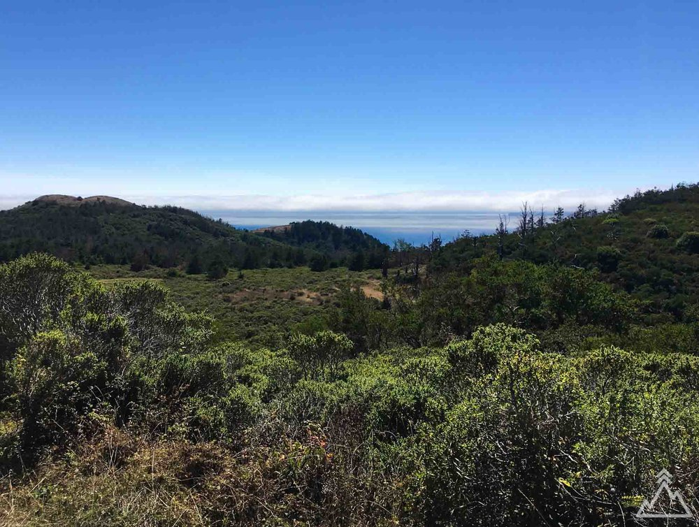 Sky Trail, Point Reyes