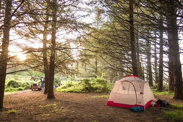 "Campsite mornings - ""Nature does not hurry, yet everything is accomplished"" Photocredit: @laurendevonart 🏕🌲☀️ @bigagnes_ . . #firtop #firtophikes #happyhiking #makeittothetop #backpacking #hiking #pointreyes #pointreyesnationalseashore #skycamp #laotzu #nature #wilderness #campsite #camping #california #bigagnes #bigagnestent #sunrise #firtrees"