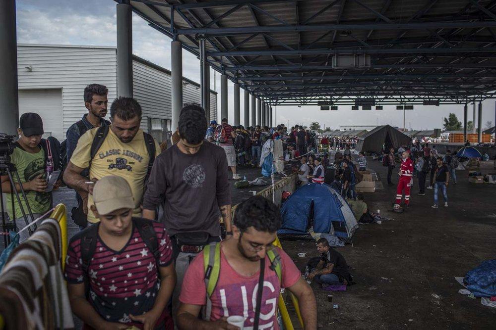 40_Migrants_low_website_.jpg