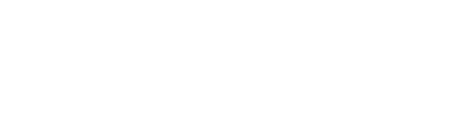 PaulDavid Salon