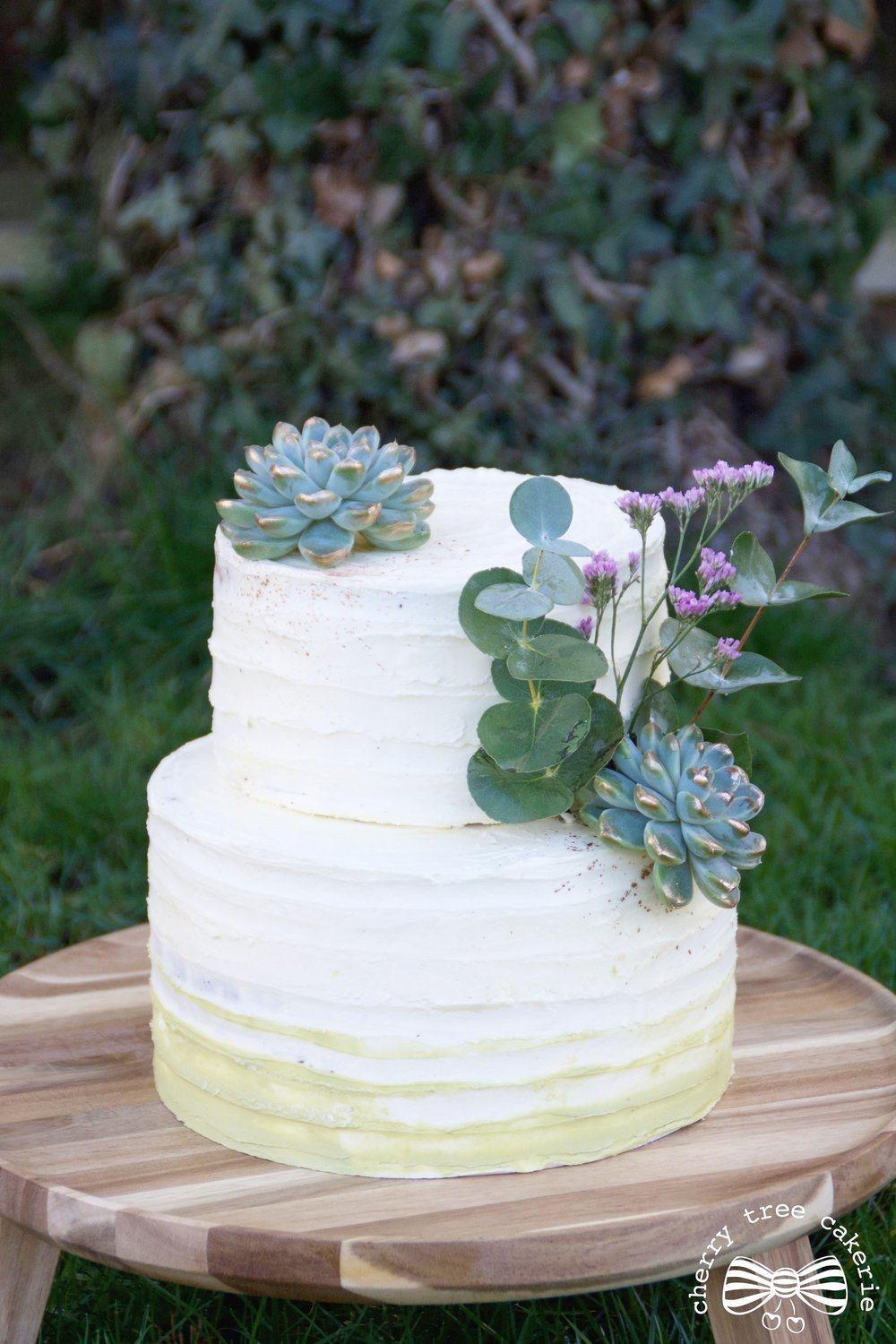 Textured-buttercream-wedding-cake-with-succulents
