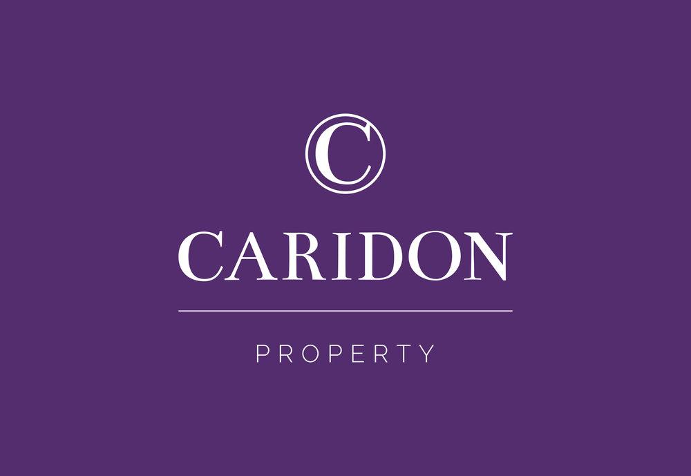 CARIDON_LOGO_PROPERTY_WHITEOUT.jpg