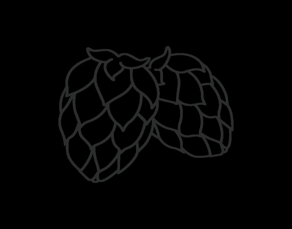 hops-test-black.png