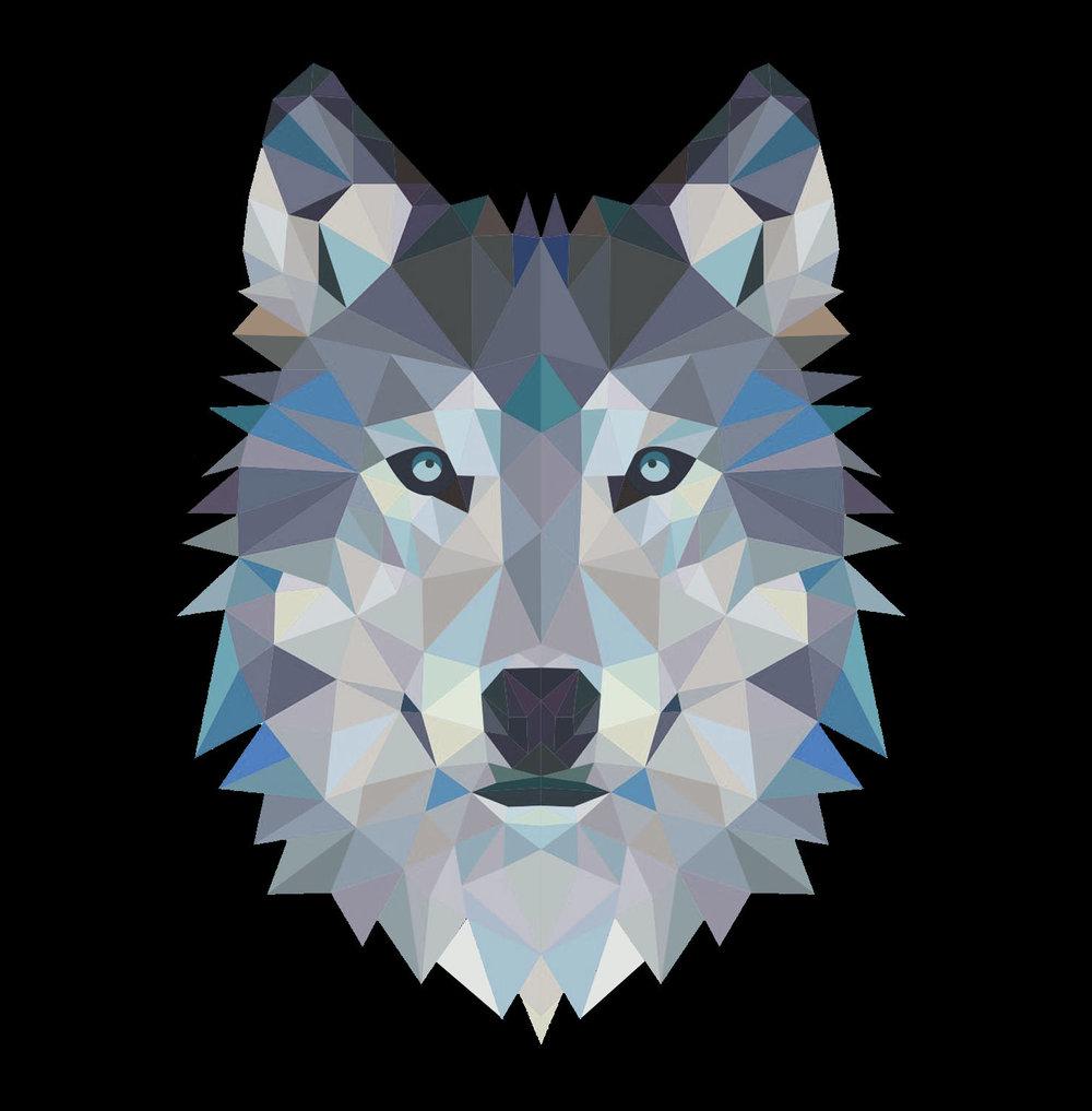 Wolfpack - 2.jpg