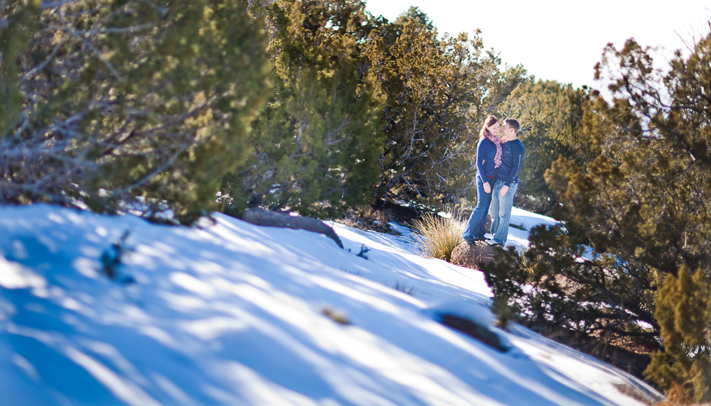 Peaceful natural winter engagement photography