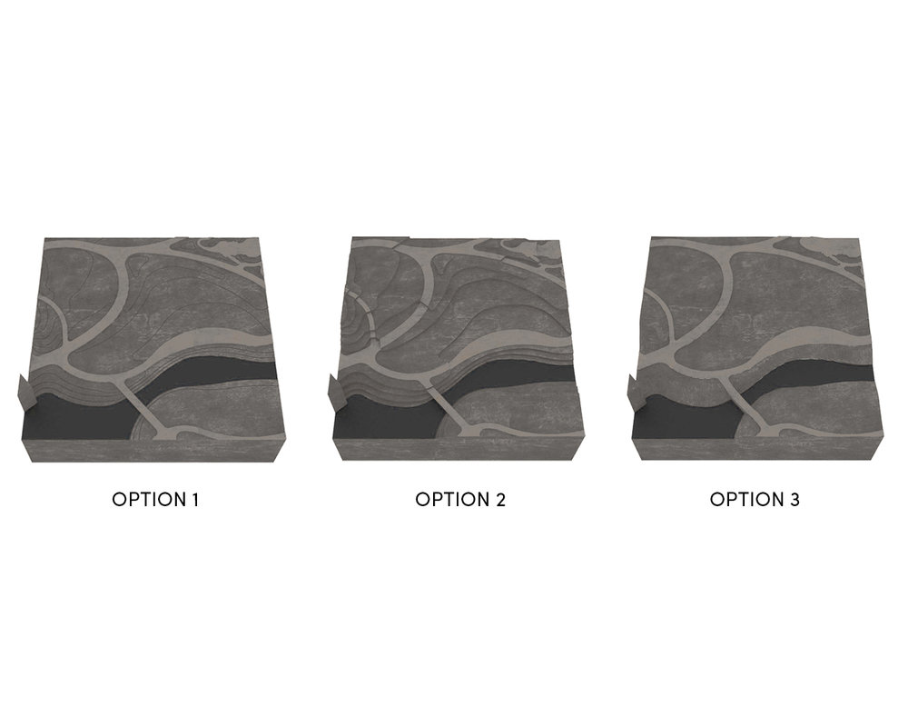 Topo Options.jpg